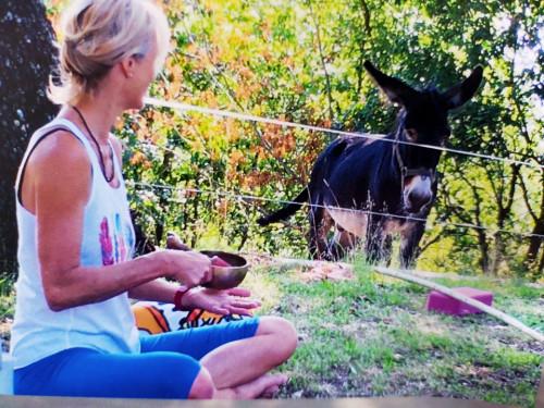 Yoga and holidays/Lago di Bolsena
